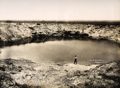 messine ridge bomb crater